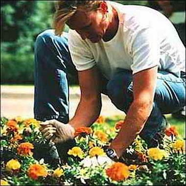 Работа в саду.