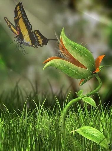 Сохраняйте природу.